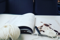 Crocheting on the train!