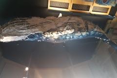 Textiles Blue Whale